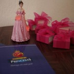 blog-blogueiro-uberlandia-minas-bruno-figueredo-escola-princesas-09
